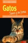 GATOS SANOS Y EN FORMA