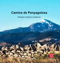 CAMINS DE PENYAGOLOSA : ITINERARIO CULTURAL A CONSERVAR