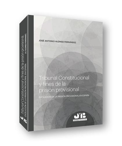 TRIBUNAL CONSTITUCIONAL Y FINES DE LA PRISIÓN PROVISIONAL.