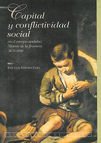 CAPITAL CONFLICTIVIDAD SOCIAL