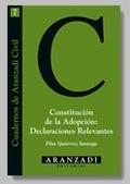 CONSTITUCION DE LA ADOPCION DECLARACIONES RELEVANTES