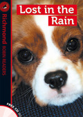 LOST IN THE RAIN, LEVEL 1. READERS