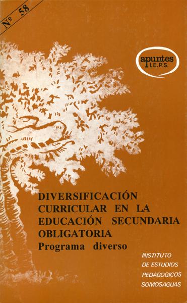 APUNTES IEPS DIVERSIFICACION CURRICULAR EDUCACION SECURNDARIA N.58