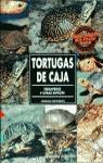 TORTUGAS DE CAJA