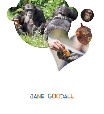PROYECTO ¿LO VES? : JANE GOODALL.