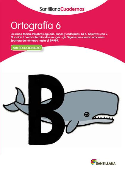 CDN 6 ORTOGRAFIA ED12