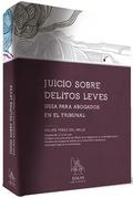 JUICIO SOBRE DELITOS LEVES