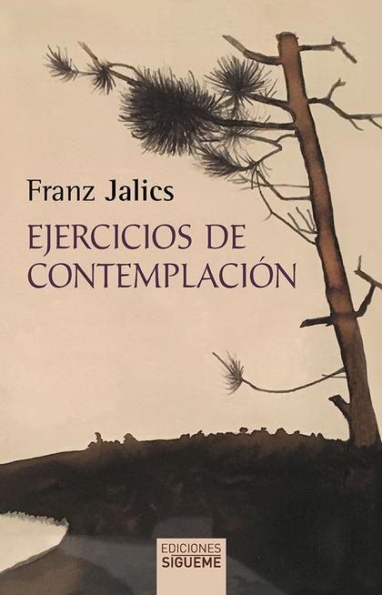 EJERCICIOS DE CONTEMPLACIÓN.
