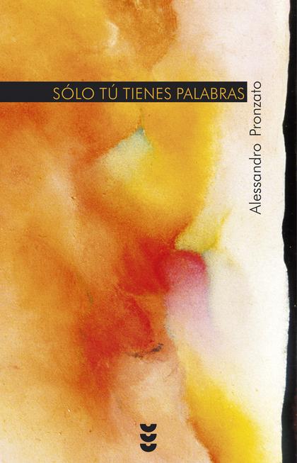 SÓLO TÚ TIENES PALABRAS: COMENTARIOS AL EVANGELIO DE MATEO