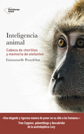 INTELIGENCIA ANIMAL. CABEZA DE CHORLITOS Y MEMORIA DE ELEFANTES