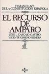 EL RECURSO DE AMPARO