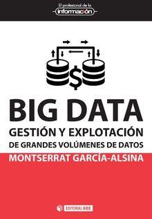 BIG DATA GESTION Y EXPLOTACION GRANDES VOLUMENES DATOS