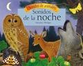SONIDOS DE LA NOCHE.