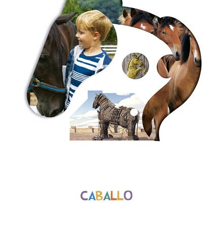 PROYECTO ¿LO VES? : CABALLO.