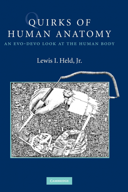 QUIRKS OF HUMAN ANATOMY