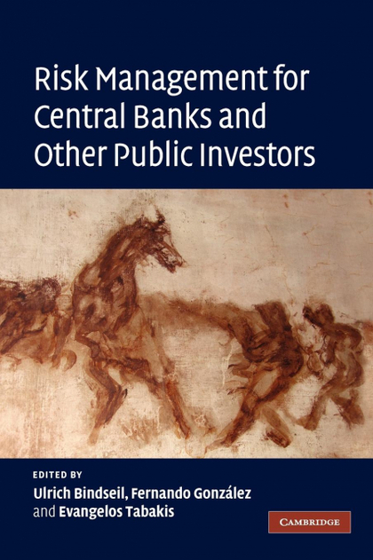 RISK MANAGEMENT FOR CENTRAL BANKS AND OTHER PUBLIC             INVESTORS.