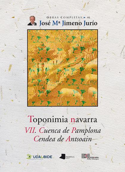 TOPONIMIA NAVARRA. VII. CUENCA DE PAMPLONA. CENDEA DE ANTSOAIN