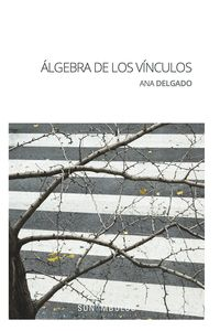 ALGEBRA DE LOS VINCULOS