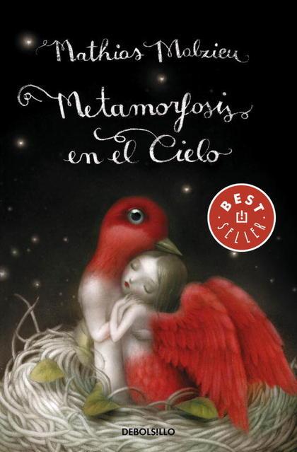 METAMORFOSIS EN EL CIELO.