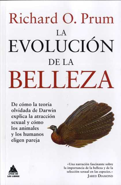 LA EVOLUCION DE LA BELLEZA