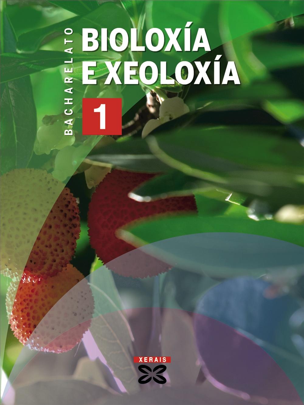 BIOLOXÍA E XEOLOXÍA, 1 BACHARELATO
