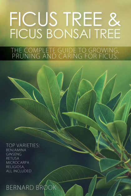 FICUS TREE AND FICUS BONSAI TREE. THE COMPLETE GUIDE TO GROWING, PRUNING AND CAR. BENJAMINA, GI