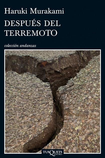 DESPUÉS DEL TERREMOTO.