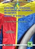 LA ATENCIÓN A LA DIVERSIDAD EN LA EDUCACIÓN SECUNDARIA OBLIGATORIA : MEDIDAS DE ATENCIÓN : LA E