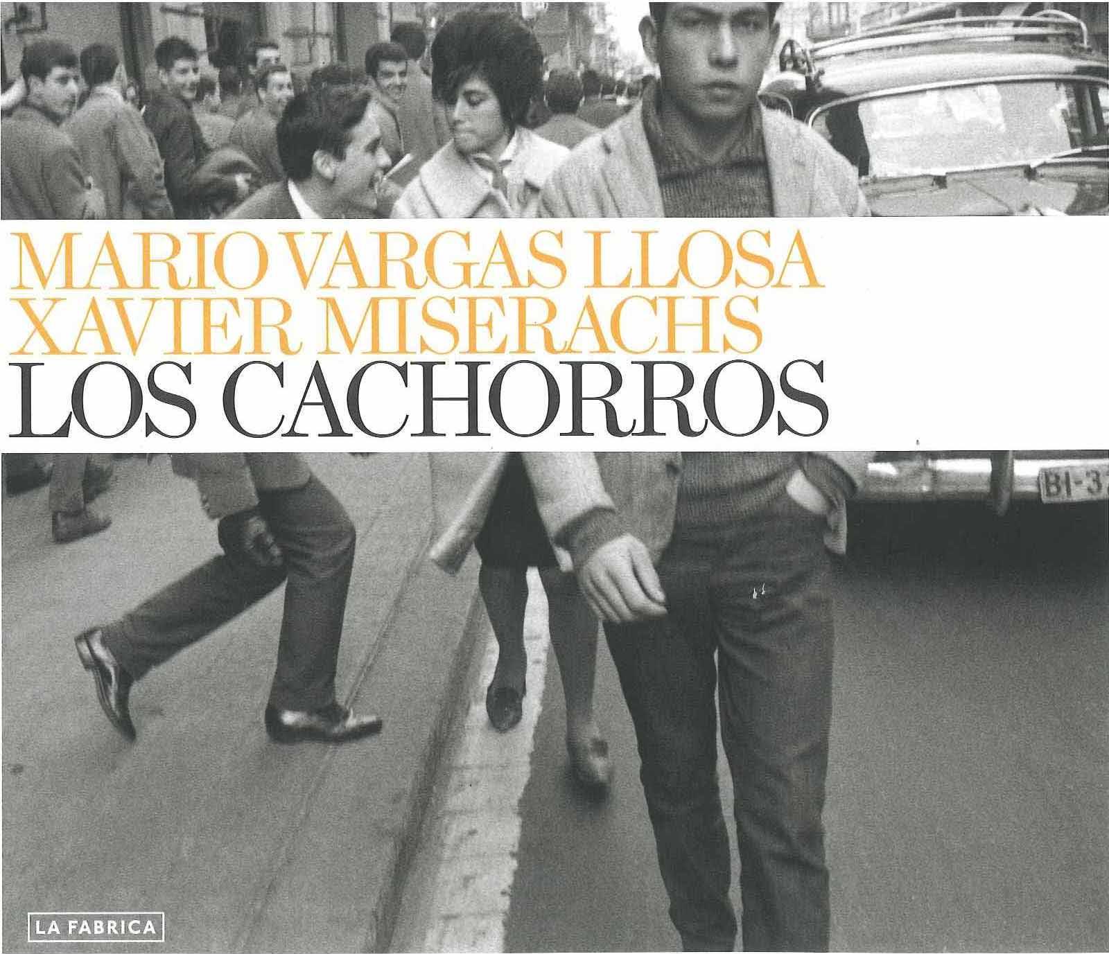 LOS CACHORROS