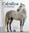 CABALLOS EN LIBERTAD