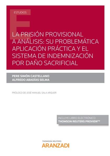 PRISIÓN PROVISIONAL A ANÁLISIS, LA: