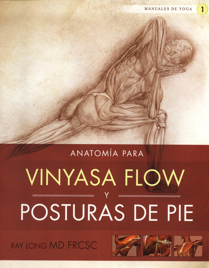 ANATOMÍA PARA VINYASA FLOW Y POSTURAS DE PIE