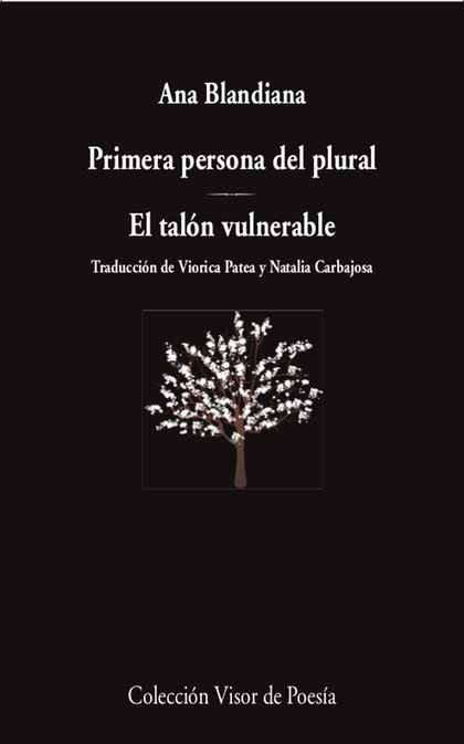 PRIMERA PERSONA DEL PLURAL ; EL TALÓN VULNERABLE