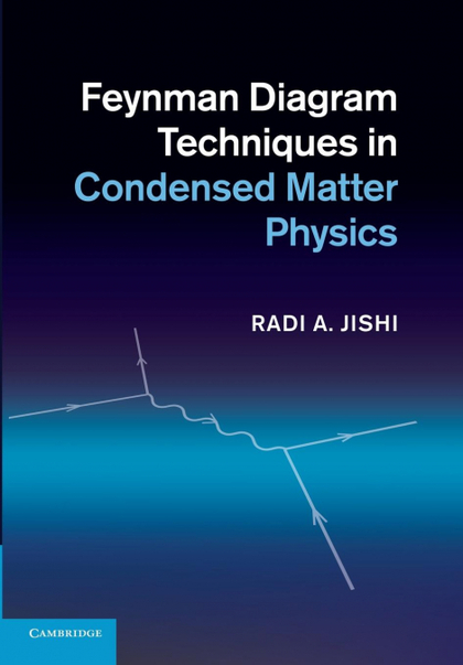 FEYNMAN DIAGRAM TECHNIQUES IN CONDENSED MATTER PHYSICS