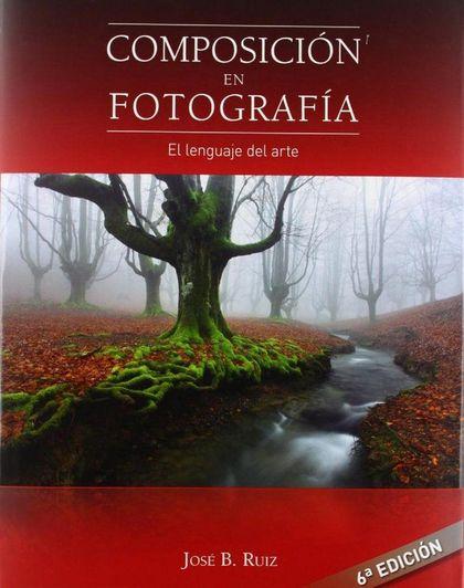 COMPOSICIÓN EN FOTOGRAFÍA : EL LENGUAJE DEL ARTE