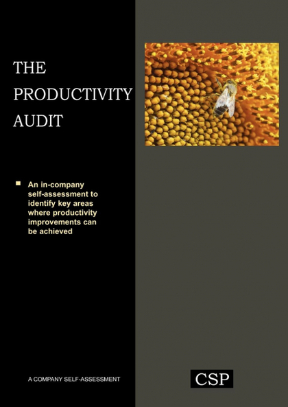 THE PRODUCTIVITY AUDIT
