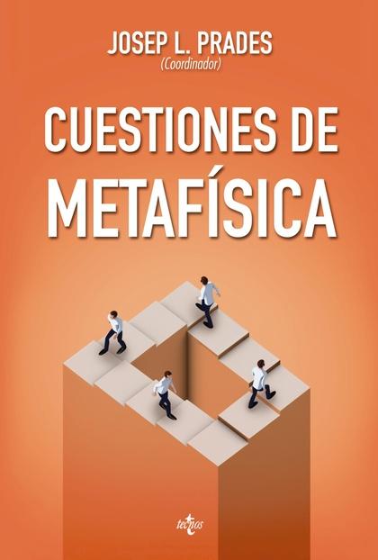 CUESTIONES DE METAFÍSICA                                                        SERIE DE FILOSO