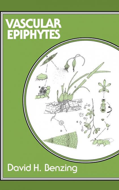 VASCULAR EPIPHYTES