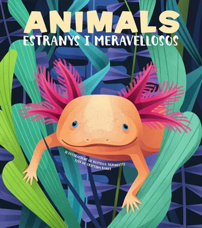 ANIMALS EXTRANYS I MERAVELLOSOS (VVKIDS).