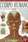 Descubre por ti mismo los secretos del cuerpo humano