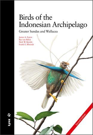 BIRDS OF THE INDONESIAN ARCHIPELAGO                                             GREATER SUNDAS