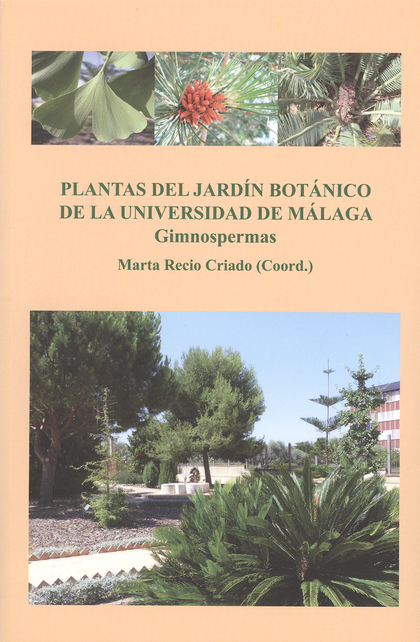 PLANTAS DEL JARDÍN BOTÁNICO DE LA UNIVERSIDAD DE MÁLAGA : GIMNOSPERMAS