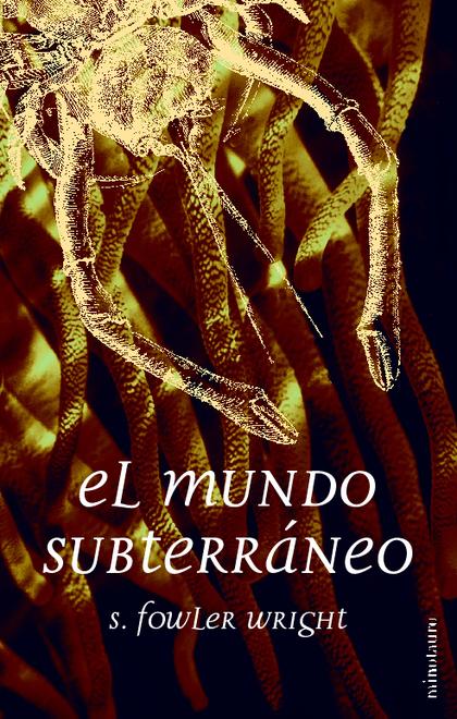 MUNDO SUBTERRANEO, EL   BOL