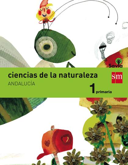 1EP.(AND)CIENCIAS DE LA NATURALEZA-SA 15.