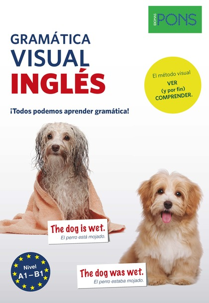 GRAMATICA VISUAL INGLES PONS