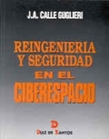 REINGENIERÍA Y SEGURIDAD EN EL CIBERESPACIO