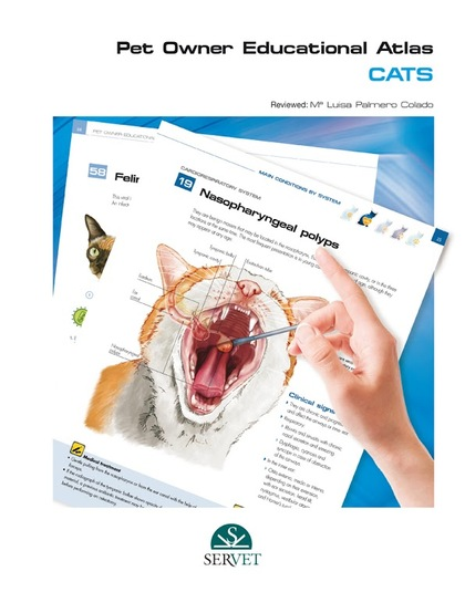PET OWNER EDUCATIONAL ATLAS CATS