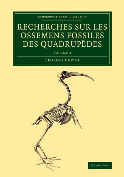 RECHERCHES SUR LES OSSEMENS FOSSILES DES QUADRUPÈDES - VOLUME             1
