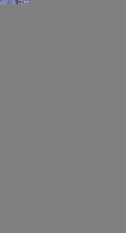 PARQUE NATURAL DE REDES. 25 RUTAS A PIE