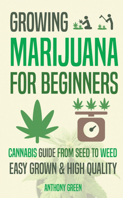 GROWING MARIJUANA FOR BEGINNERS. CANNABIS GROWGUIDE - FROM SEED TO WEED